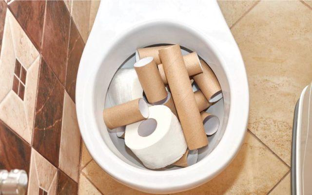 Nhà vệ sinh mới xây có mùi hôi